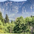 Featured Image Little Bear Lodge