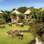 Featured Image MARA RIVER SAFARI LODGE at Bali Safari & Marine Park
