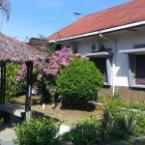 Other Musa Enda Homestay