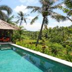 null Villa Abadi - Luxury Vacation Rental