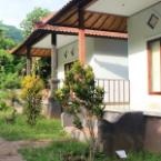 Other Panji Homestay Amed
