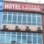 null Hotel Lavender