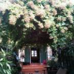 Other Thai Classic Sweet and Exclusive Home Stay