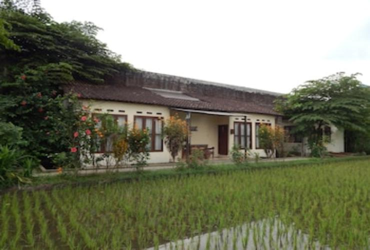 Featured Image Rosella Cottage Yogyakarta