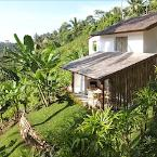 Featured Image Zenubud Villa