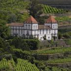 Featured Image Casa das Torres de Oliveira