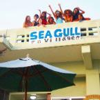 Featured Image Guesthouse Seagull Village