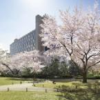 Featured Image The Prince Sakura Tower Tokyo, Autograph Collection