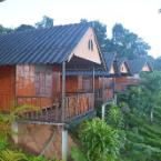 Featured Image Phucheefah Homestay