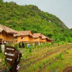 Featured Image My Rose Valley Resort