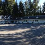 Featured Image Pines Motel