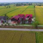 Featured Image D'Sawah Bendang Homestay