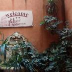 Featured Image Hotel Robinson
