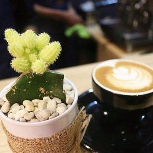 Gendis Coffee and Kitchen